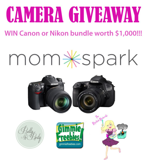 Camera Giveaway The Hopeless Housewife