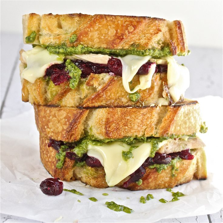 Turkey, Pesto and Cranberry Melt